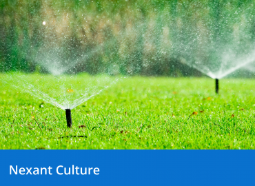 Conserve Water in Commercial Buildings and Your Home