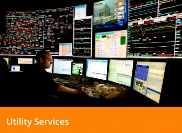 Grid Operations and Resilience